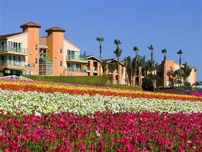 Grand Pacific Palisades Resort & Hotel, San Diego
